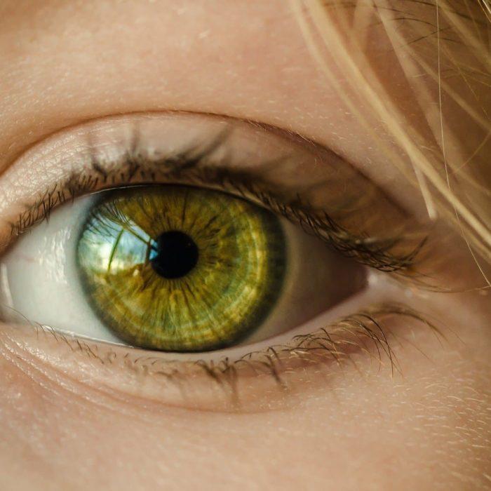 La vision: Un secteur qui attire tous les regards.